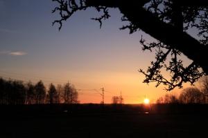 Gyllene morgon