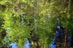 Speglar blå himmel