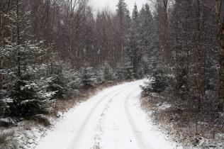 Det börjar snöa allt mer
