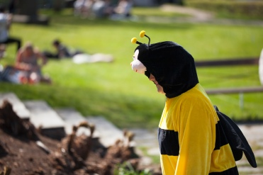 Botaniskas inhyrda pollinerare